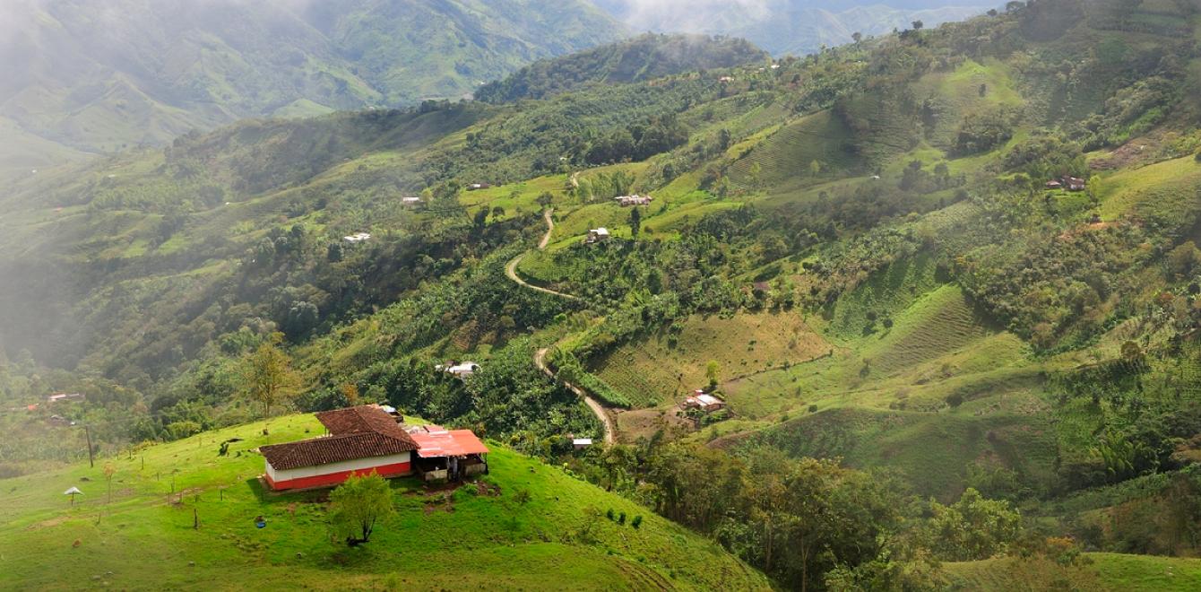 Landschaft Kafffeezone