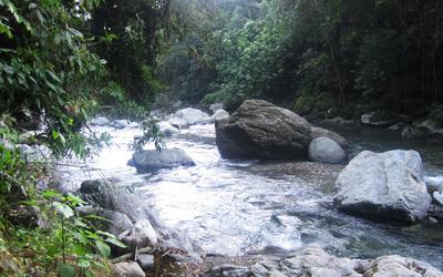 Sierra Nevada Santa Marta, River