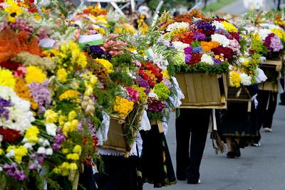 Feria de Flores, Medellin, Silleteros